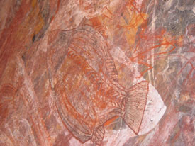 Aboriginal Art - X-Ray Fish