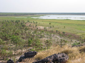 Nardab Floodplain